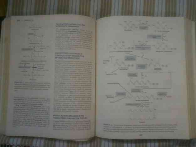 Harper's Illustrated Biochemistry (coloured) 26th Edition