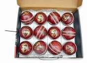 Sg cricket leather cricket ball