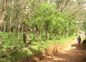 10 , 25 cents land for sale in kannur district