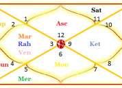 astrologer joshi - astrologer, palmist, vaastu and spiritual consultants