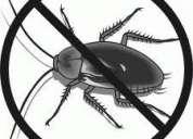 Cockroach pest control service in hyderabad