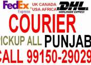 Courier amritsar to usa canada australia uk africa spain italy germany georgia nepal dubai