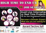 Software online training in chennai