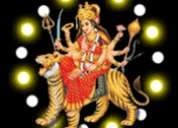 Love solutions astrolohger +91 8968983536