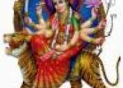 Inter cast love marriage problem spcialist 09887352182 09878673445