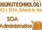 Online soa admin training centers in world