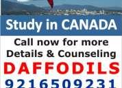 Daffodils canada study visa consultant : chandigarh