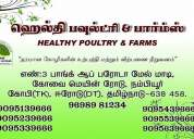 Healthy poultry farms