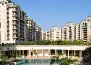 4 bhk residential penthouse for rent in ats green village,sector-93a,noida