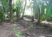 5 cent east faced house plot for sale in tripunithura town.